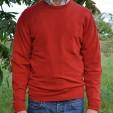 Mens Cashmere Crew Neck Sweater in Jasper